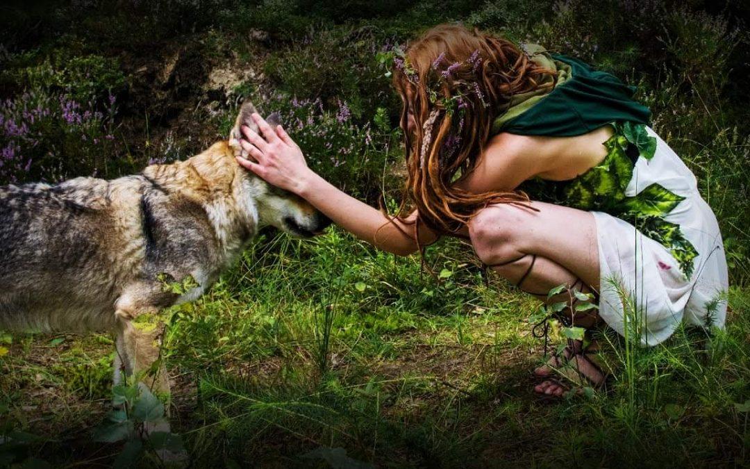 Vasalissa: La Sabia. Mujeres que corren con los lobos. Enero de 2019.
